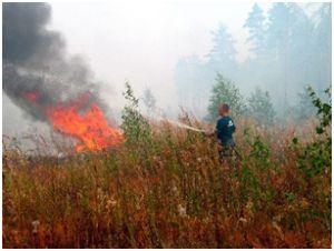 Многие не готовы к пожароопасному периоду
