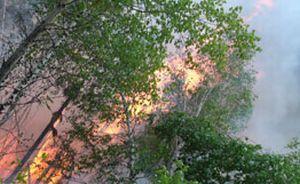 Новые пожары в Хабаровском крае