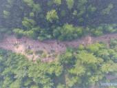 В Китае третий день не могут потушить масштабный лесной пожар