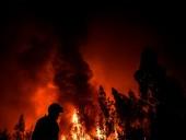 Из-за лесных пожаров в Португалии ранены девять людей