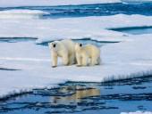 На водах Аляски из-за потепления исчез лед