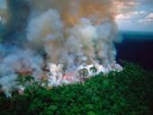Макрон призвал обсудить пожары в Бразилии на саммите G7