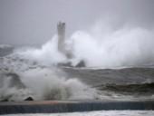 Панамское грузовое судно затонуло в Японии из-за тайфуна