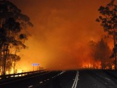 Лесные пожары в Австралии: два человека погибли, десятки травмированы