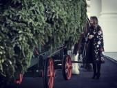 В Белый дом доставили рождественскую елку