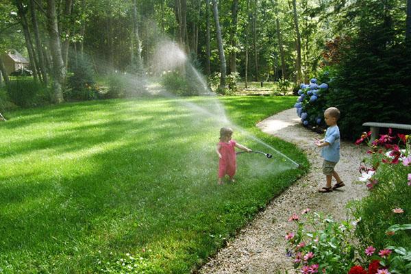 Современные системы полива газона в Москве