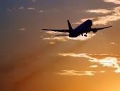 Самолет Майкла Пенса столкнулся с птицей во время полета