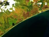 Нефтяное пятно на побережье Камчатки растеклось на сотни метров