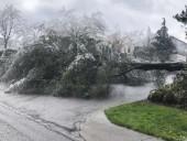 Снежный шторм в США забрал жизни 58 человек