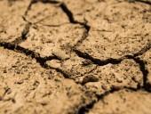 Ученые: летние засухи в Европе в последние годы намного серьезнее чем за прошедшие два тысячелетия