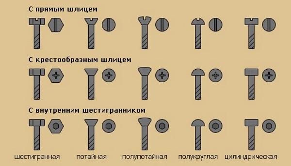 Крепежные винты: конструкция и виды