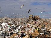 Парламент Франции одобрил тюремное наказание за нанесение вреда экологии