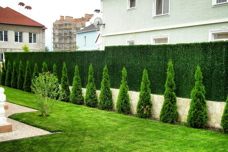 Ландшафтный дизайн участка — есть ли место зеленому забору?