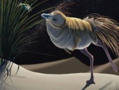 Динозавр размером с пинту: ученые обнаружили
