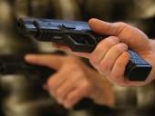 В Чехии в Конституцию внесут право на самозащиту с оружием