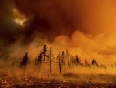 В Калифорнии из-за жары зафиксировали масштабные пожары: людей эвакуируют