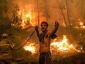 Лесные пожары в Алжире: не менее 65 человек погибли