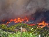 Лесные пожары в Греции добрались к руинам античной Олимпии