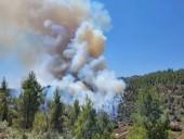 Крупные лесные пожары вспыхнули неподалеку от Иерусалима