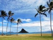 На Гавайских островах произошло землетрясение магнитудой 6,2