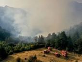 Турецкий Кемер охватили лесные пожары
